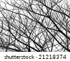 art of tree branch - stock photo