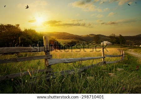 art rural landscape. field and grass  - stock photo