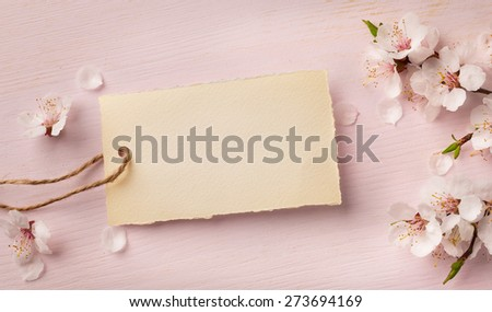art Spring border background with pink blossom - stock photo