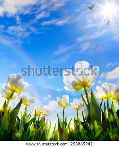 art Spring flower on Easter Day - stock photo