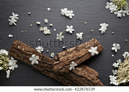 Art spring flowers background with bark from a tree on a black slate