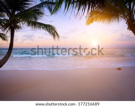 Art sunrise over the tropical beach - stock photo