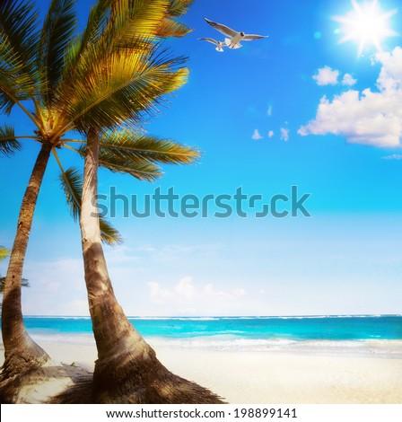 Art Untouched Caribbean tropical beach  - stock photo
