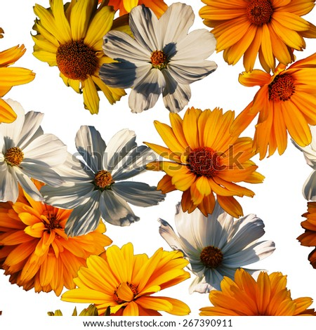art vintage colorful graphic and watercolor floral seamless pattern with gold orange asters isolated on white background - stock photo