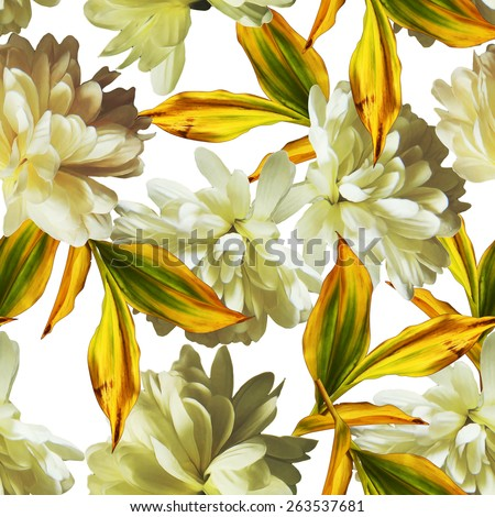 art vintage floral seamless pattern  with white asters isolated on white background - stock photo
