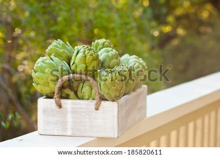 Artichokes in a wooden box.  - stock photo