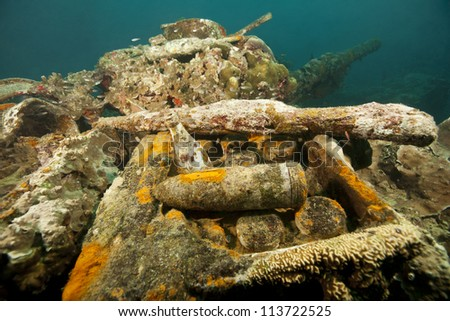Artifacts on the 80mm deck gun of the Helmut Wreck, a Japanese cargo ship sunk by American forces during World War II in the waters off the islands of Palau in Micronesia. - stock photo
