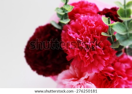artificial carnation bouquet for Mother's day image - stock photo