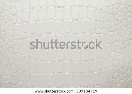 Artificial crocodile leather texture white - stock photo