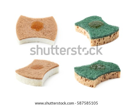 Small artificial christmas tree isolated stock photo 361135364 shutterstock - Seven different uses of the kitchen sponge ...