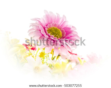 Artificial flowers on white background (high key)