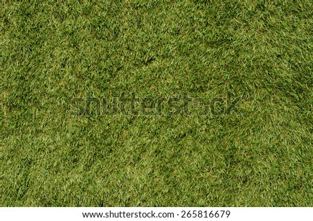 Artificial grass background - stock photo