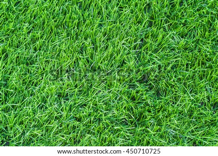 Artificial grass background close-up