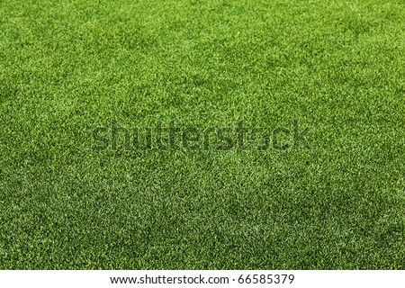 Artificial Grass Field Perspective View Shallow Depth of Field - stock photo