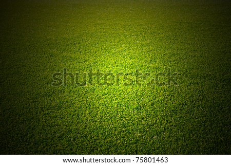 Artificial grass texture - stock photo