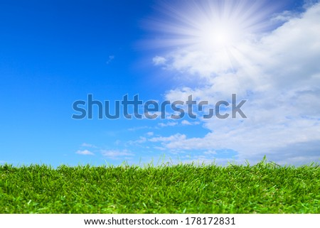 Artificial grass under blue sky and cloud - stock photo