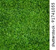 artificial green grass , turf background - stock photo