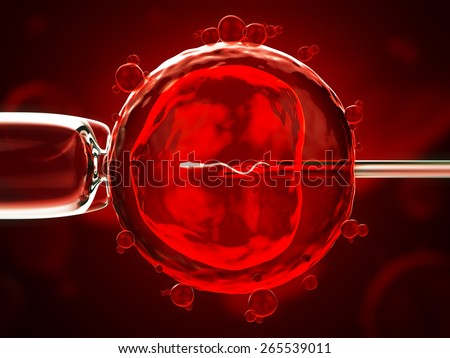 artificial insemination cell under the microscope - stock photo