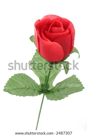 artificial red rose with white background