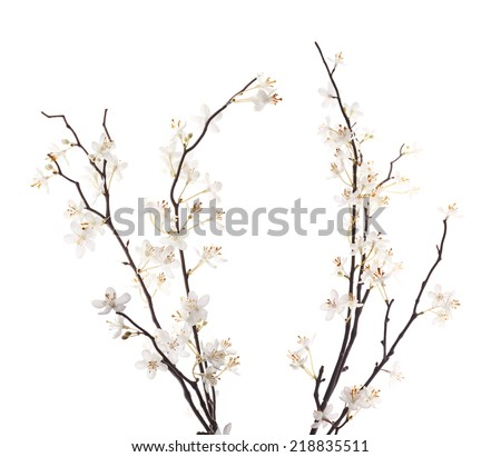 Artificial white sakura flower branches isolated over the white background - stock photo
