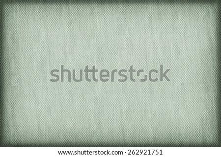 Artist Pale Green Primed Linen Duck Canvas, coarse grain, vignette grunge texture. - stock photo