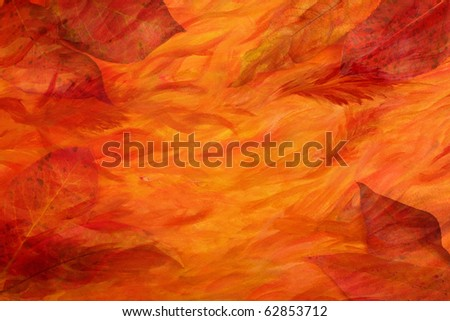 Artistic autumn background - leaves combined with colorful acrylic painted paper - stock photo