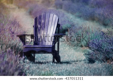 Artistic composition Digital art, oil paint effect Adirondack old chair, on lavender flowers field