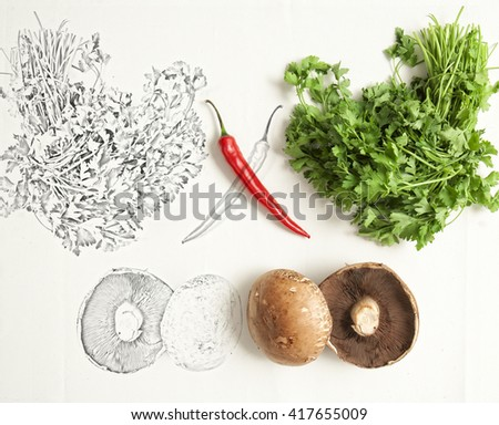 Artistic conceptual photo of red chili , parsley and mushrooms and it's mirrored sketch  - stock photo