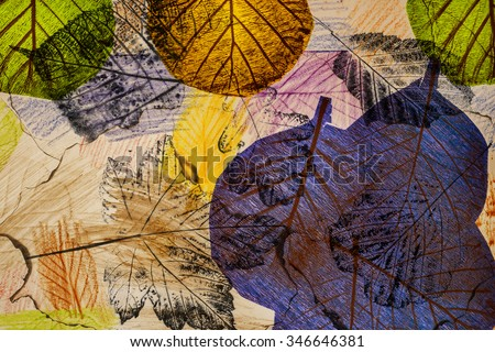 artistic image - imprints of leaves - Graphics - monotype - stock photo