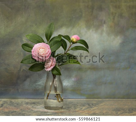 Artistic textured still life of pristine Pink Perfection Camellias in an old milk bottle against a canvas background.