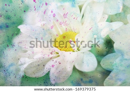 artwork with chamomile's flower close up and green watercolor splashes - stock photo