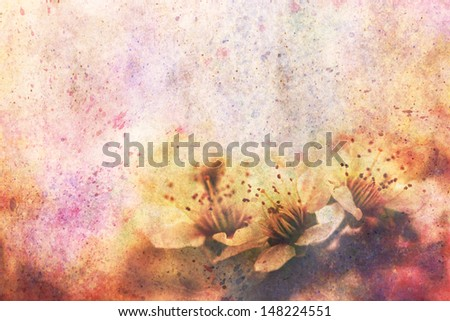 artwork with fragile beautiful apricot tree flowers and watercolor strokes - stock photo