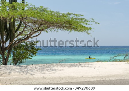 Aruba, Caribbean - September 28, 2012: A man in a Kayak by the Aruba beach