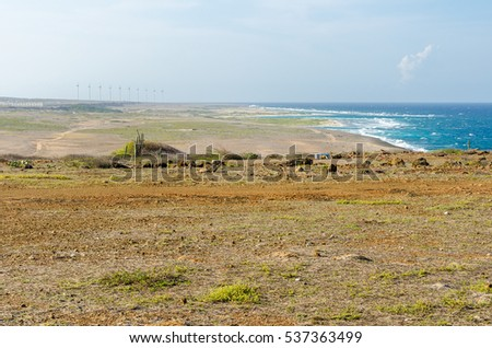 Aruba, Caribbean - September 26, 2012: Dry and arid desert landscape with cactus and native plants in Aruba Island at the Caribbean sea