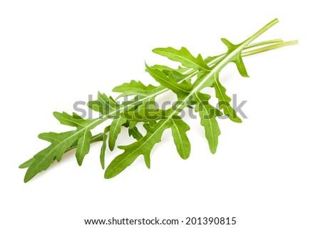 Arugula sprig isolated on white - stock photo