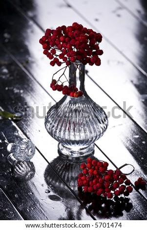 ash-berry in the vase - stock photo