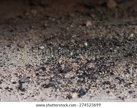Ashes from bonfire under the fireplace - stock photo