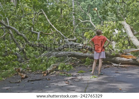 Asheville, North Carolina, USA - May 23, 2014: A frustrated looking young woman confronts a large oak tree that has fallen across the road blocking her way  - stock photo
