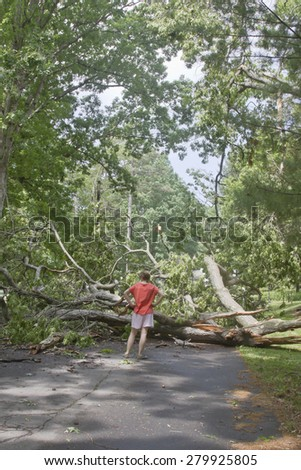 Asheville, North Carolina, USA - May 23, 2014: A young female walking along a narrow road is blocked by a large oak tree felled by a storm lying across a wet road on May 23, 2014 in Asheville, NC - stock photo