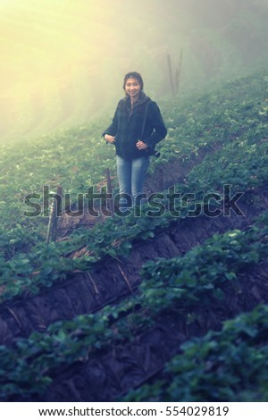 asia tourist woman in strawberry farm on doi angkhang mountain at chiangmai thailand