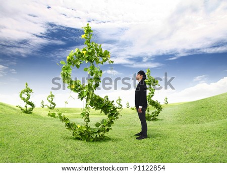 asia young business man looks dollars tree - stock photo