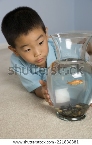 Asian boy looking at fish