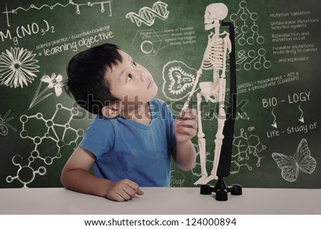 Asian boy studies human anatomy isolated on white