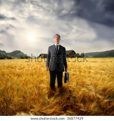 asian business man standing in a wheat field - stock photo