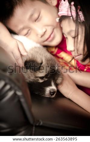 Asian children caress Thai Bang Kaew Puppy  sitting on sofa. - stock photo