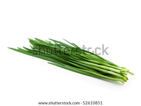 Asian chives (leek) isolated on pure white - stock photo
