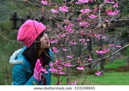 Asian girl is looking at the sakura tree - stock photo