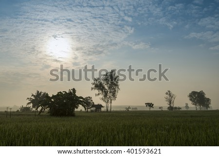 Asian landscapes showing irrigation channels and aqueducts used for water transportation in times of drought. - stock photo