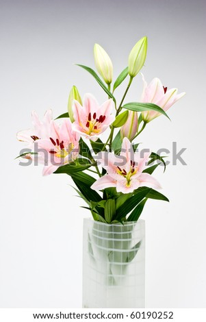 Asian lily arrangement in frosted vase. - stock photo