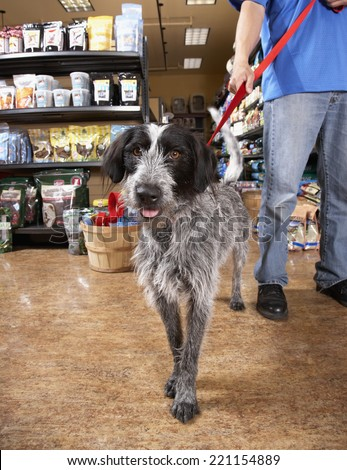 Asian man with dog in pet store - stock photo